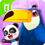 Baby Panda's Bird Kingdom